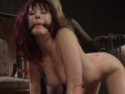 The mistress gets dominated
